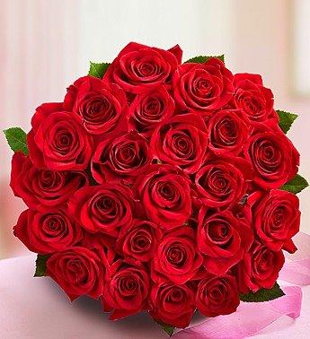 1 800 flowers two dozen red roses bouquet only for Un bouquet de roses